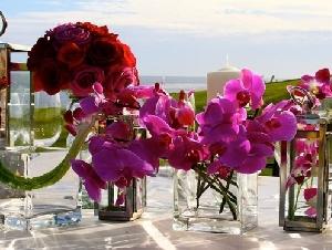 Flower Season - Fioraio a Catania