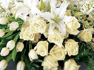 Onoranze Funebri La Resurrezione